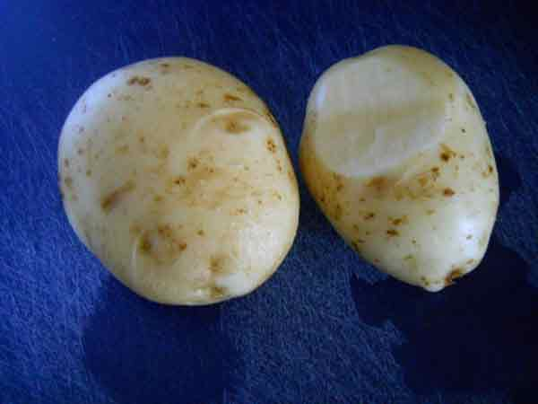 Taters raw and only minutes from the garden